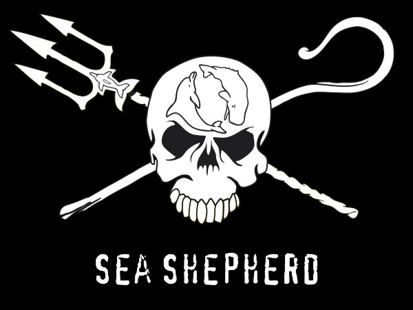 conservacion tiburones sea sepherd